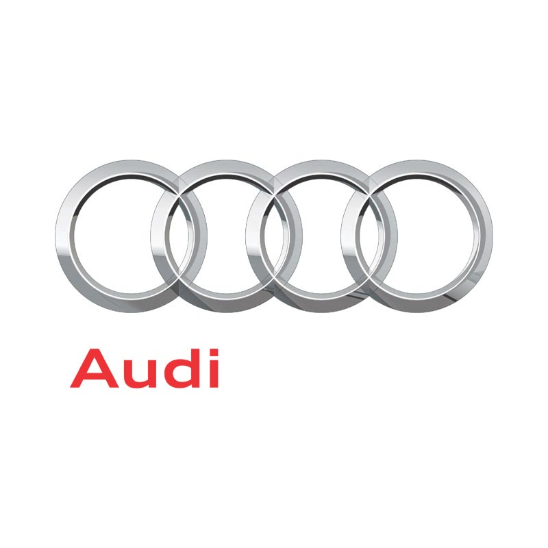 product category image audi Pegasus 4x4
